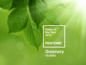 verde iarba Pantone