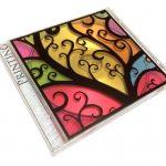 UV printing – carcasa CD